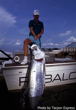 Texas tarpon guides captain mike williams and the tarpon for Texas saltwater fishing magazine